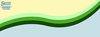 SeizerStyle Designs 2013 Twitter Background